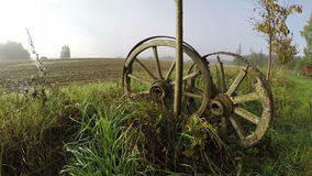 Two wooden wheels on misty autumn's morning, time lapse 4K. Two wooden horse carriage wheels by the young tree in fields on misty autumn's morning, time lapse 4K stock video footage