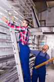 Two workers choosing PVC window profile Royalty Free Stock Photos