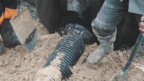 Two workers compress sand around black plastic pipe with shovels and boots stock video footage