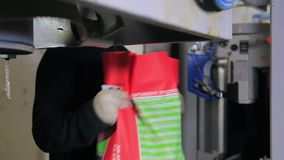 Two Workers Packs Bags with Food for Pigs Turin. Two Workers Packs Bags with Food for the Pigs Turin stock video footage