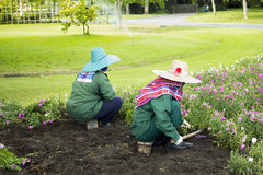 Two workers taking care of a flower garden Stock Photo