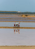 Two workers at the west coast salt pans in Marsala Stock Photos
