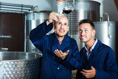 Two workers on wine factory Royalty Free Stock Images
