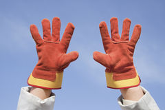 Two working gloves against the blue sky Stock Image