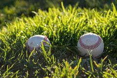 Two worn baseballs sitting in the grass in the afternoon sun stock images