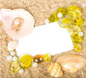 Two worn golden rings and shells. Beautiful two worn golden rings and shells, crystals with banner add Stock Image