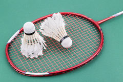 Two worned out badminton shuttlecock with racket on green court Stock Image