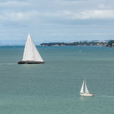 Two yachts in Hauraki Gulf Stock Photo