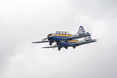 Two Yak-52 planes fly in formation. TVER, RUSSIA - JULY 09: two Yak-52 aerobatic planes fly in formation during the Tver Blue Skies aviation festival on July 09 Royalty Free Stock Photos