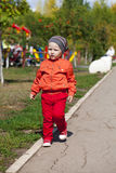 The two-year boy walks in the park Stock Photo