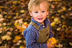 Two year old boy holding a gourde in New England fall Stock Image