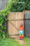 Two year-old toddler girl is reaching up door swivel hook. And opening wooden wicket gate royalty free stock photography