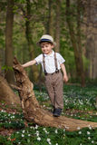 Two years old boy Stock Image