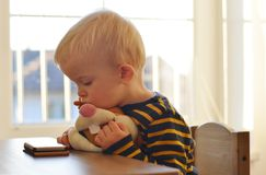 Two years old boy is watching at mobile phone and holds his plush hare. Royalty Free Stock Photography