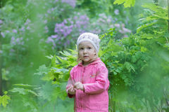 Two years old cute girl wearing white knitted hat at green spring garden lilac shrubbery background Stock Photography