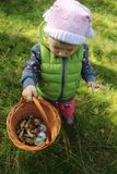 Two years old girl with a basket full of mushrooms stock image