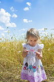 Two years old girl examining blue wild cornflower in her hand Royalty Free Stock Images