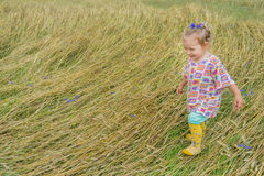 Two years old preschooler girl walking on annual. Two years old preschooler girl is walking on annual plants field covering royalty free stock image