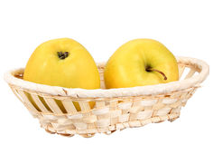 Two  yellow apples in basket Stock Image