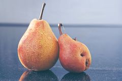 Two yellow big ripe pears . Autumn background. Royalty Free Stock Images