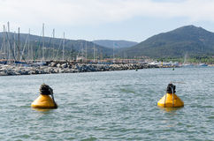 Two yellow buoys Royalty Free Stock Image
