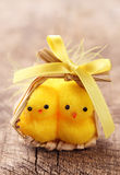 Two yellow chickens Royalty Free Stock Photography