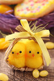 Two yellow chickens Stock Image