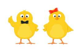 Two yellow chicks Royalty Free Stock Photography