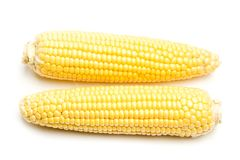 Free Two Yellow Corns Royalty Free Stock Photo - 115822745