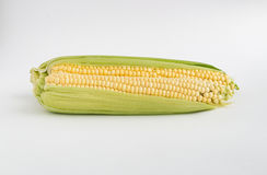 Two yellow corns on a white background Royalty Free Stock Photography