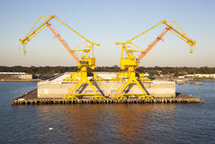 Two Yellow Cranes Stock Photos