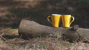 Two yellow cups on the log. Background for web stock footage