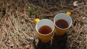 Two yellow cups of tea outdoor. Nice accessuares for the picnic in wood stock video footage