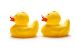 Two yellow duck toys Royalty Free Stock Photography