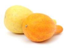 Two yellow gourd Stock Photo