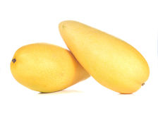 Two yellow mango on white background. Stock Images