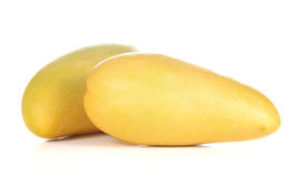 Two yellow mango on white background. Royalty Free Stock Images