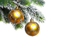 Two yellow New Year's balls and snow-covered branches of a Christmas tree on a white background Stock Image