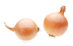 Two yellow onion bulbs. Isolated on white Stock Photo