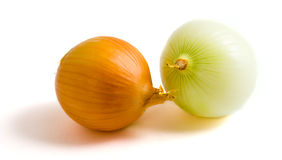 Two yellow onion bulbs. Isolated on a white background Stock Photography