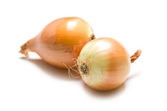 Two yellow onions Royalty Free Stock Photography