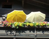 Parasols on a sunny terrace. Two yellow openparasols on a balcony in the sunshine, with window boxes full of colourful flowers Stock Image