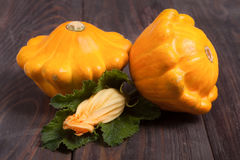 Two yellow pattypan squash with leaf and flower on a dark wooden table Stock Image