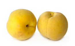 Two yellow peaches on white background Royalty Free Stock Image