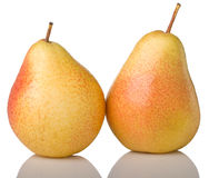 Two yellow pears. Isolated on white background Royalty Free Stock Images