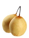 Two yellow pears Stock Image
