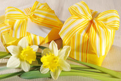 Two yellow presents Royalty Free Stock Photo