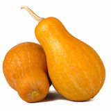 Two yellow pumpkins Royalty Free Stock Images