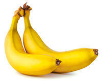 Two yellow ripe banana Stock Image