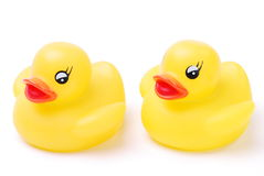 Two Yellow Rubber Ducks. Two little Toy Yellow ducks  on a white background Stock Photography